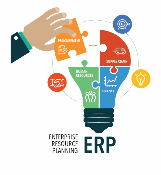 Erp-software-development-in-India